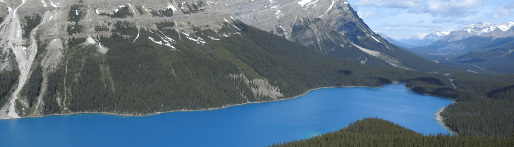 Panoramic photo of Lake Peyto, the most beautiful lake in Canada. The crystal water comes from the melting glaciers.