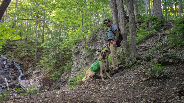 Dean Campbell hiking with his dog in the Gatineau Park